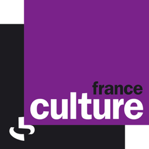 Neuro-Bretagne sur France Culture