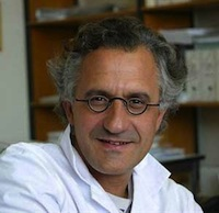 Professeur Marc Verin