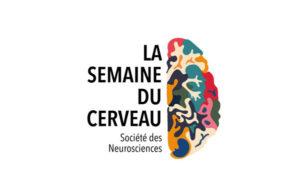 affiche logo semaine du cerveau